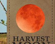 Harvest Moon Antiques Gift & Gallery